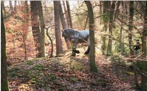 Marco werkt samen met zijn baas Reind Beelen in het bos - foto Ruben Schipper.