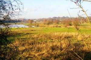 Het gebied waardoor de nieuwe beekloop moet komen (foto W. Kiel)