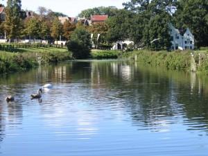 De St. Jansbeek met op de achtergrond de Witte molen en het bezoekerscentrum