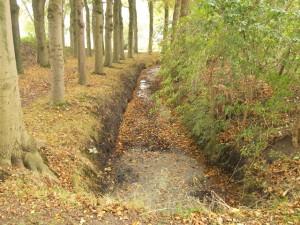 De Kromme Beek stromend langs de Kromme Steeg