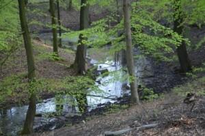 Het Kleigat, de sprengkop van de Beekhuizensebeek