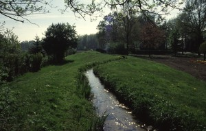 De bovenbeek voor Broekerhave bij het Horstje. Het opgeleide karakter is goed zichtbaar