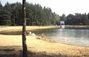 Opslagvijver nabij de Hertenkamp aan de Dellenweg
