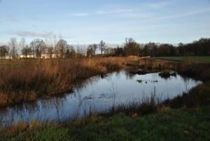 Situatie Grift na aanpassing in een robuuste ecologische bedding