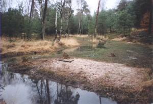 Imbosbeek