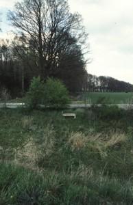 Sprengkop van de Stroobroekbeek (aan de overzijde van de weg)