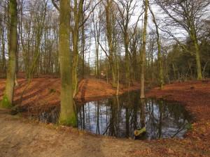 De Source en de kleinste sprengenbeek van de Zuid-Veluwe.