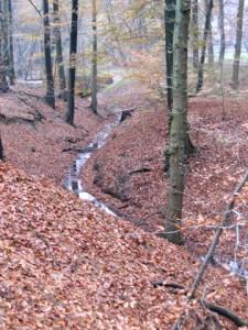 Slijpbeek op het landgoed Mariëndaal