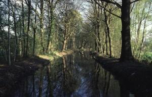 Opgeleid deel van de Bovenbeek