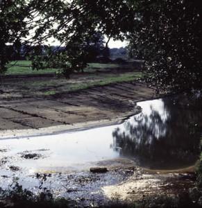 Beekherstel van de Egelbeek, voorzien van afgevlakte natuurvriendelijke oevers