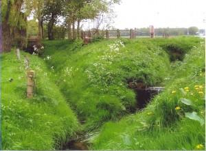 De molenplaats van de voormalige Vanenburger Molen. Links de oude beek met op de achtergrond muurresten, rechts de huidige beekloop