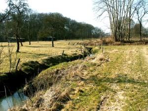 Veldbeek
