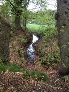 Groevenbeek Putten (foto drs. Jacq. Meijer)