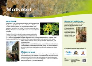 """Het informatiebord  'vertelt"""" over verleden en heden van het sprengkoppengebied maar ook over de flora en fauna  in de Motketel."""