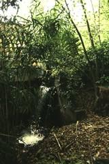 Waterval van de Papiermolen aan de Keienberg