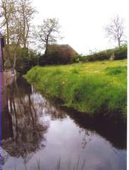 De Papiermolenbeek waar de Papiermolen te Werfhorst heeft gestaan. Op de beekbodem zijn nog restanten te vinden