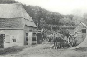 De Rozendaalse Korenmolen in 1905