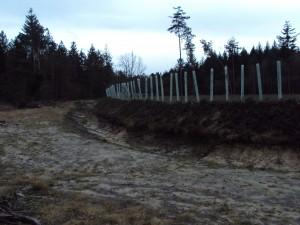 Herstelde historische boswal bij Renderklippen (foto Henri Slijkhuis)