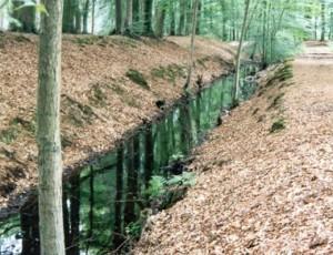 Volenbeek